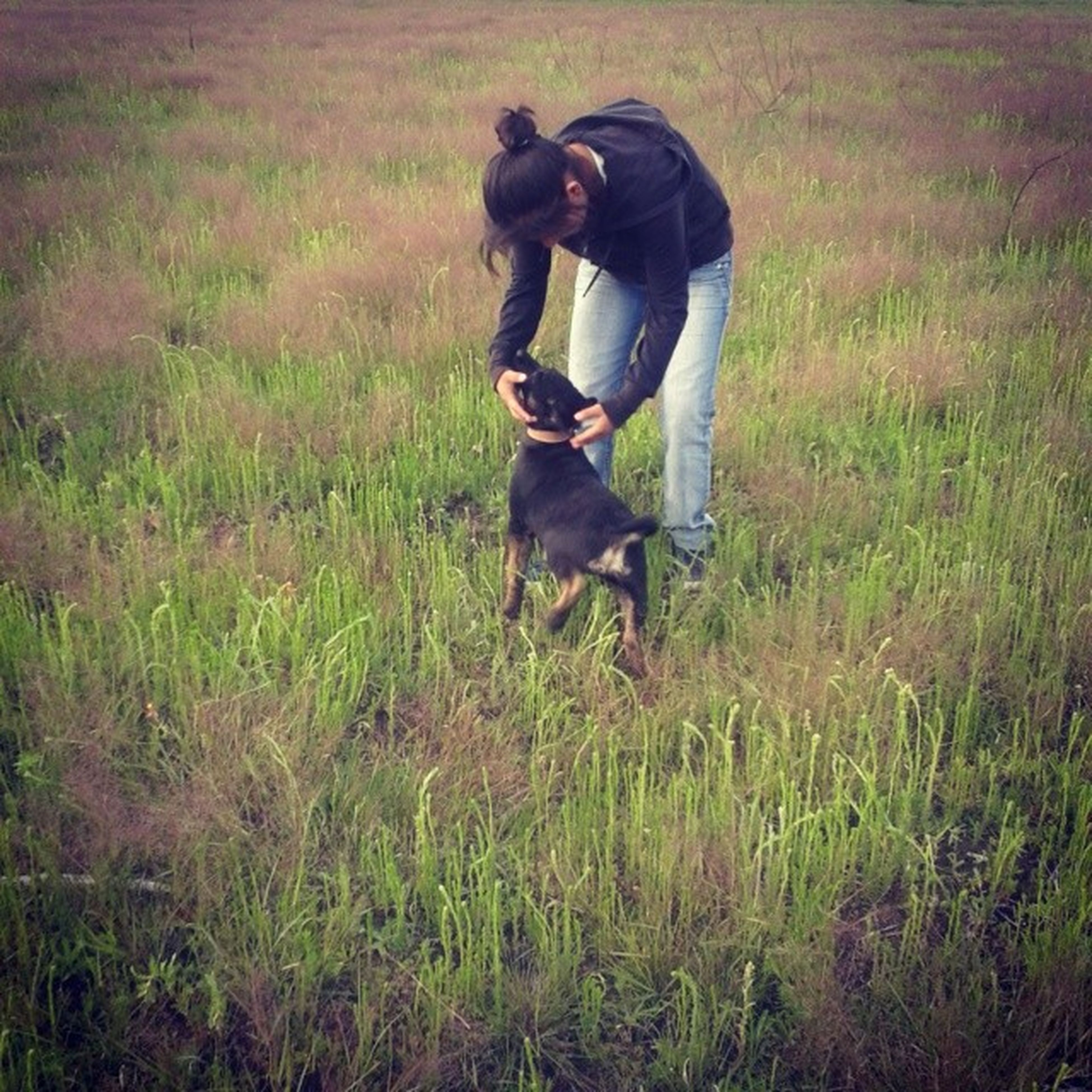 grass, field, grassy, one animal, animal themes, full length, lifestyles, dog, standing, domestic animals, mammal, leisure activity, men, casual clothing, day, side view, outdoors, nature