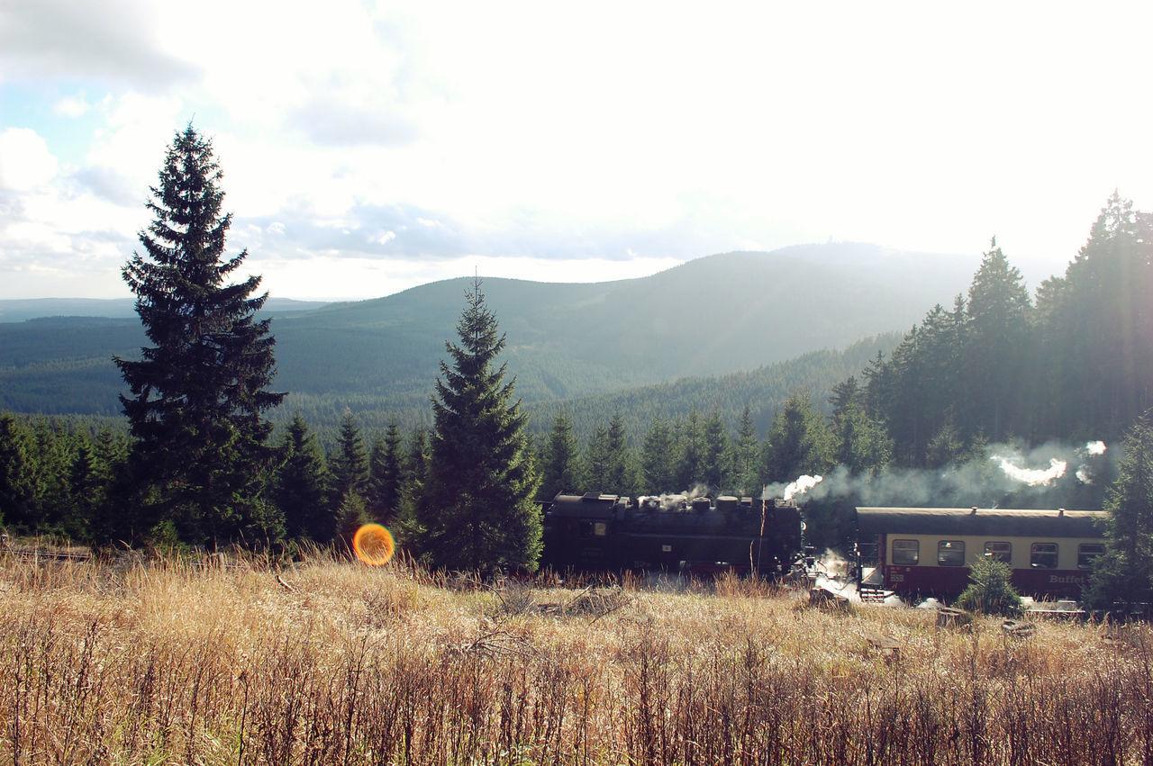 Brocken Brockenbahn Harz Landscape Mountain Mountain View Mountains Railway Sunflare Train View