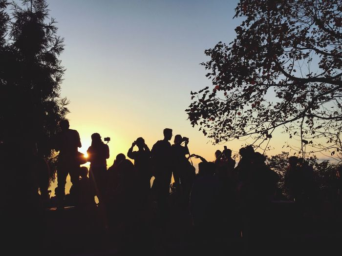 Sunlight Tree Large Group Of People Clear Sky Lifestyles Men Togetherness Person Nature Outdoors Blue Beauty In Nature Girls Girl Sunrise