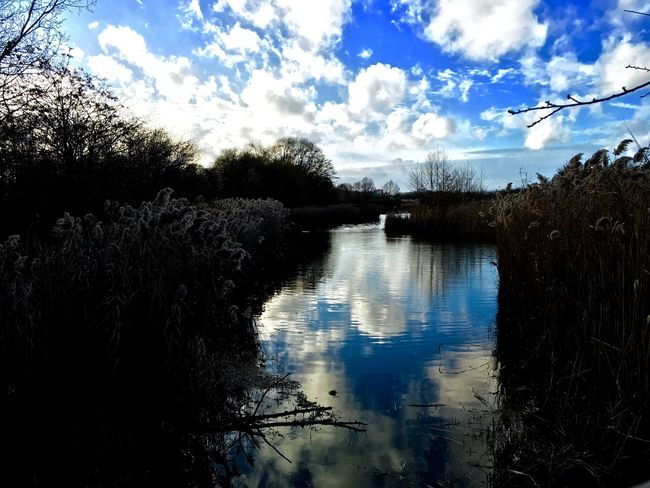 Relaxing Lac December IPhoneography Iphonephotography Kishanths_photography Lastof2015 Taking Photos Water Reflections Cloudy Sky