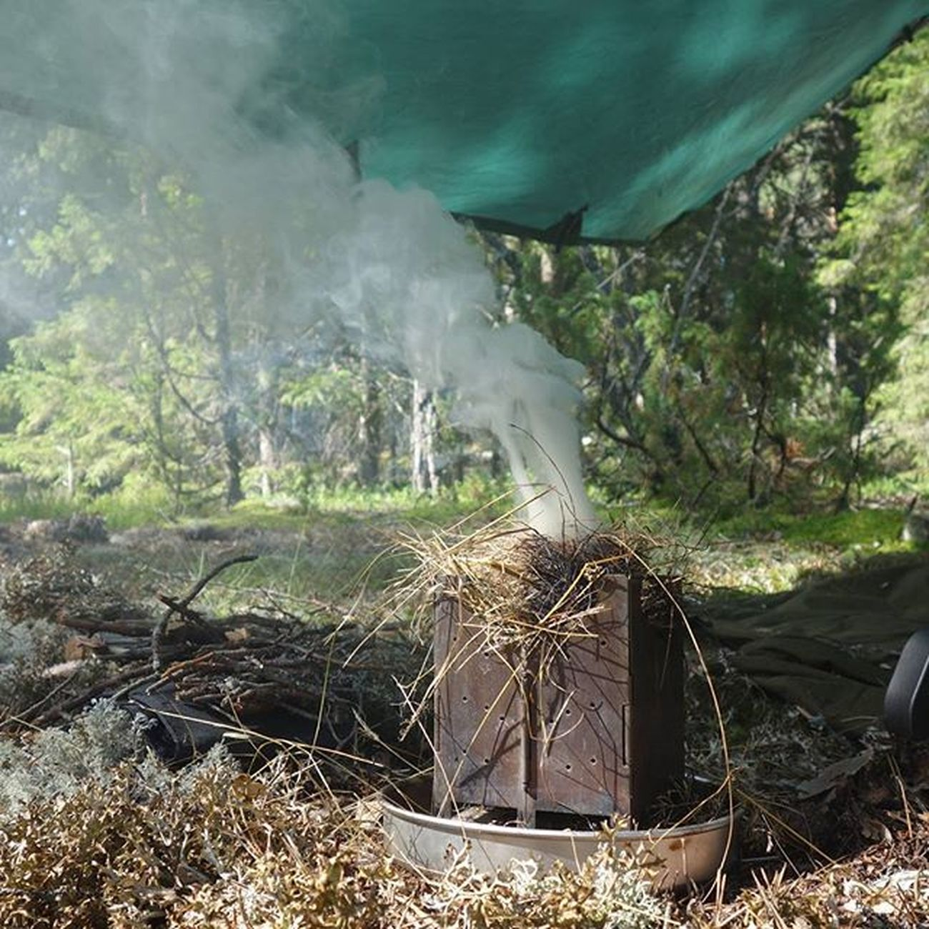 Kuntzi works as a good insect repellent as well.. Bushcooker Kuntzi Bushcraft DDhammocks ddtarp