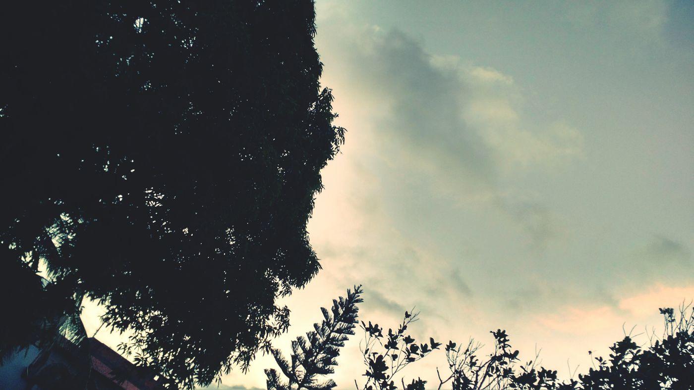 Céu Lindo! Clouds And Sky