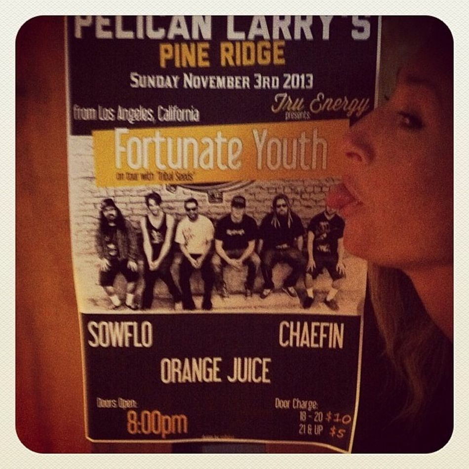 Get to PelicanLarrys tonight for a kick ass show with Sowflo Chaefin & Orangejuice