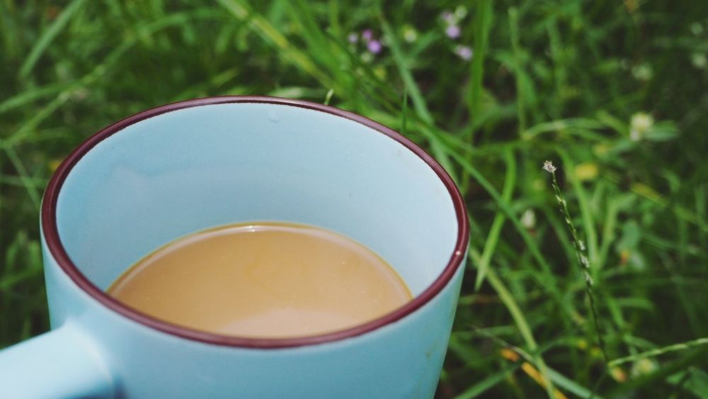 Country life Coffee Outdoors Slow Life Grass Flowers,Plants & Garden Garden Garden Photography Relaxing