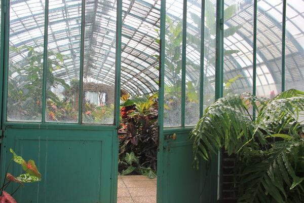 Inside of Les Serres D'Auteuil 16emearrondissement Auteuil Nature Paris Serre Day Door Greenhouse Lookinside No People Serresdauteuil
