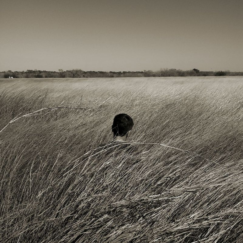 Nature Outdoors In A Field Field Of Wheat Secluded  Portrait Stand Out From The Crowd Alone Depressed Backgrounds Loneliness Caption This One Person Standing Grass Nature Plant Beauty In Nature Rose - Flower Flowers EyeEmNewHere BYOPaper! EyeEm Selects