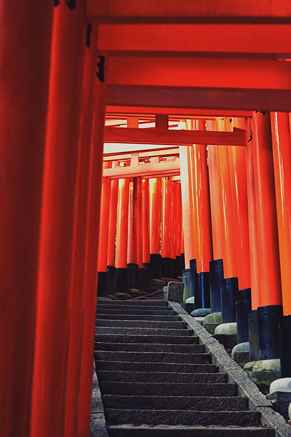 Torii heaven Fushimi Inari Shrine Kyoto Japan TORII Religion Spirituality Place Of Worship Red Cultures EyeEmNewHere Shrine Day Built Structure Architecture