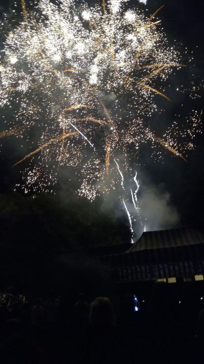 Long Exposure Exploding Night Firework Explosion