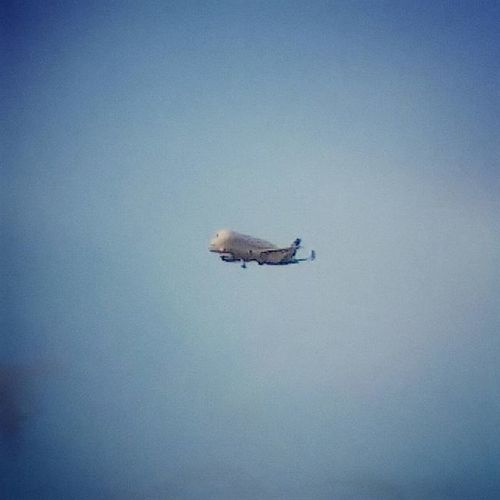 Beluga Airbus coming into land over Chester. Plane Aircraft Airbus Beluga Sky Flight