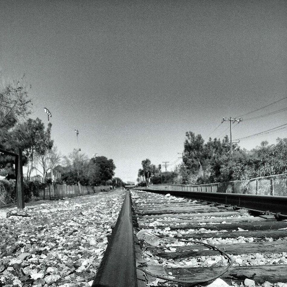 Trainspotting Jj  Losangeles Blackandwhite Bnw Fortheloveofblackandwhite Monochrome Black&white LiveanddirectfromLosAngeles Railroad Railroad Track