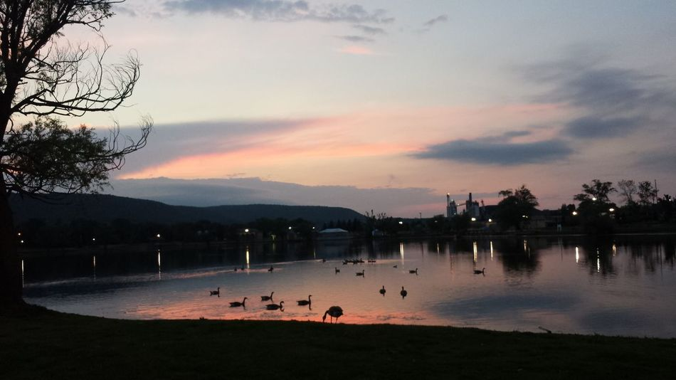 Eldridge Park At Dusk Sunset Lake Reflection Colors