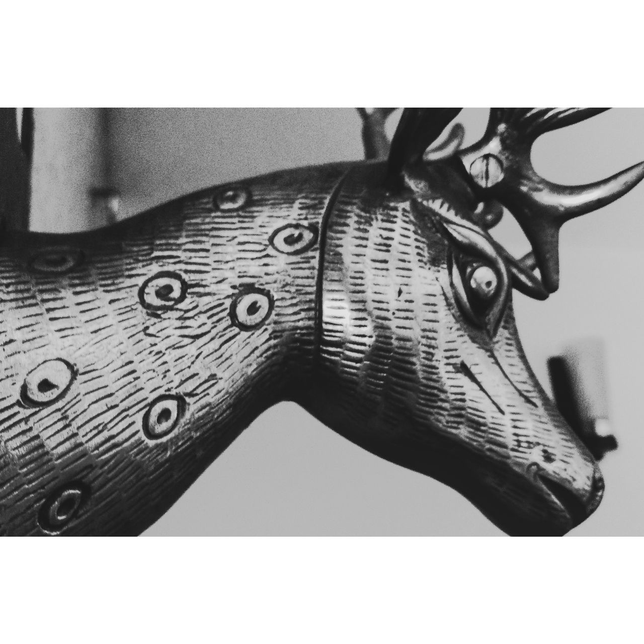 Illuminated Deerhead Deer Bnw_collection Blackandwhite Photography Close-up