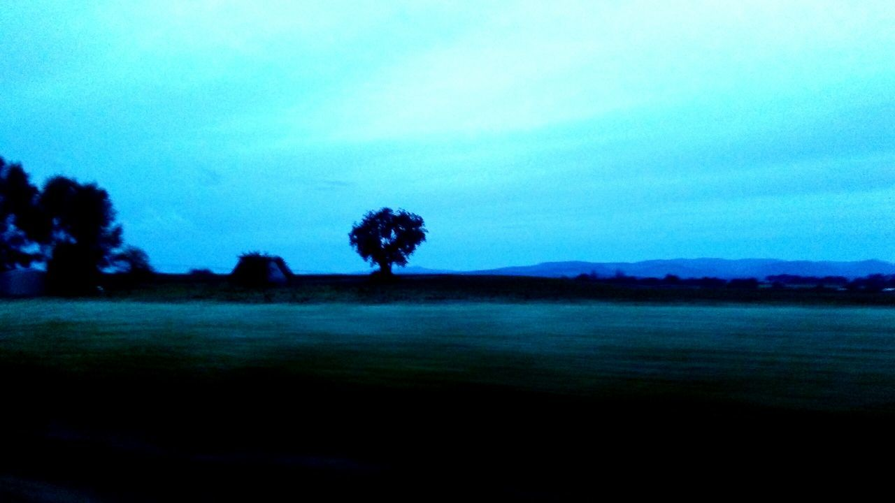 Original Experiences Blue Hour Blue Mornings Blue Beauty My Life In Review Beautiful Moments Oregon Beauty Eyem Gallery Solo Tree  EyeEm Best Shots - Nature The Innovator Reflections EyeEm Nature Lover The Great Outdoors - 2016 EyeEm Awards From The Car Window New Talent Landscape Blue World Chill Silentstill Inspirational Lonely Tree TRENDING  EyeEm Best Shots