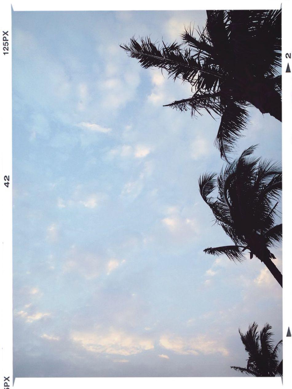 Cloud And Sky Beach