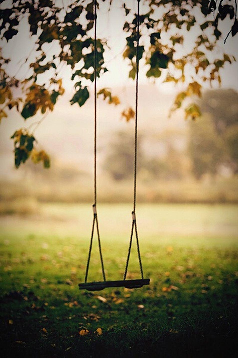 Lifeisbeautiful Enjoy Time Let's Swing Feeling Free
