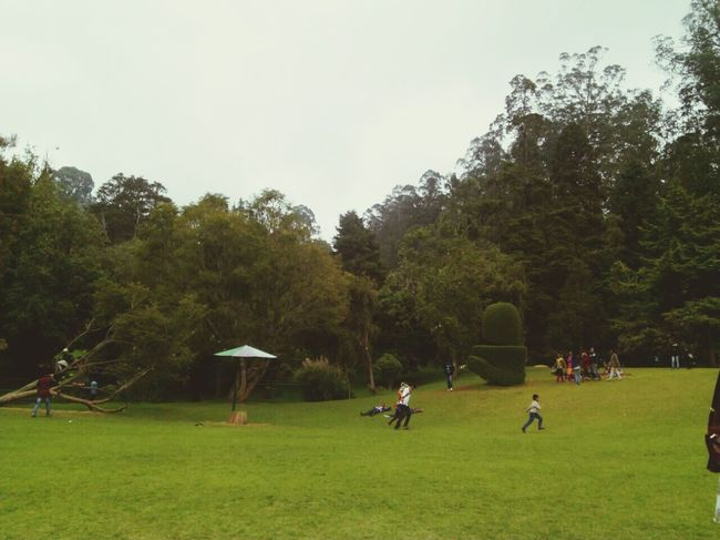 Ootydiaries Awesome Climate Beautiful View Relaxing In Park Taking Photos Hanging Out Family Time Hello World Enjoying Life Surrounding Environment Looks Peaceful It Looks So Awesome Love To Take Photos ❤ Away From The City Landscape_photography Peaceful Place