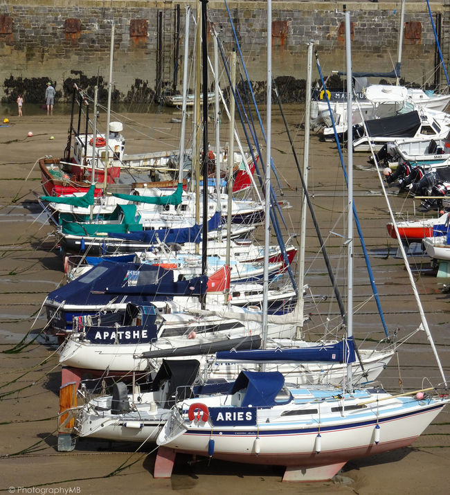 Boats Docks Fishing Boat Harbor Landscape_Collection Lines Marine Marine Transportation Moored Outdoor Photography Outdoors Repitition Sand Ship Side View Tranport