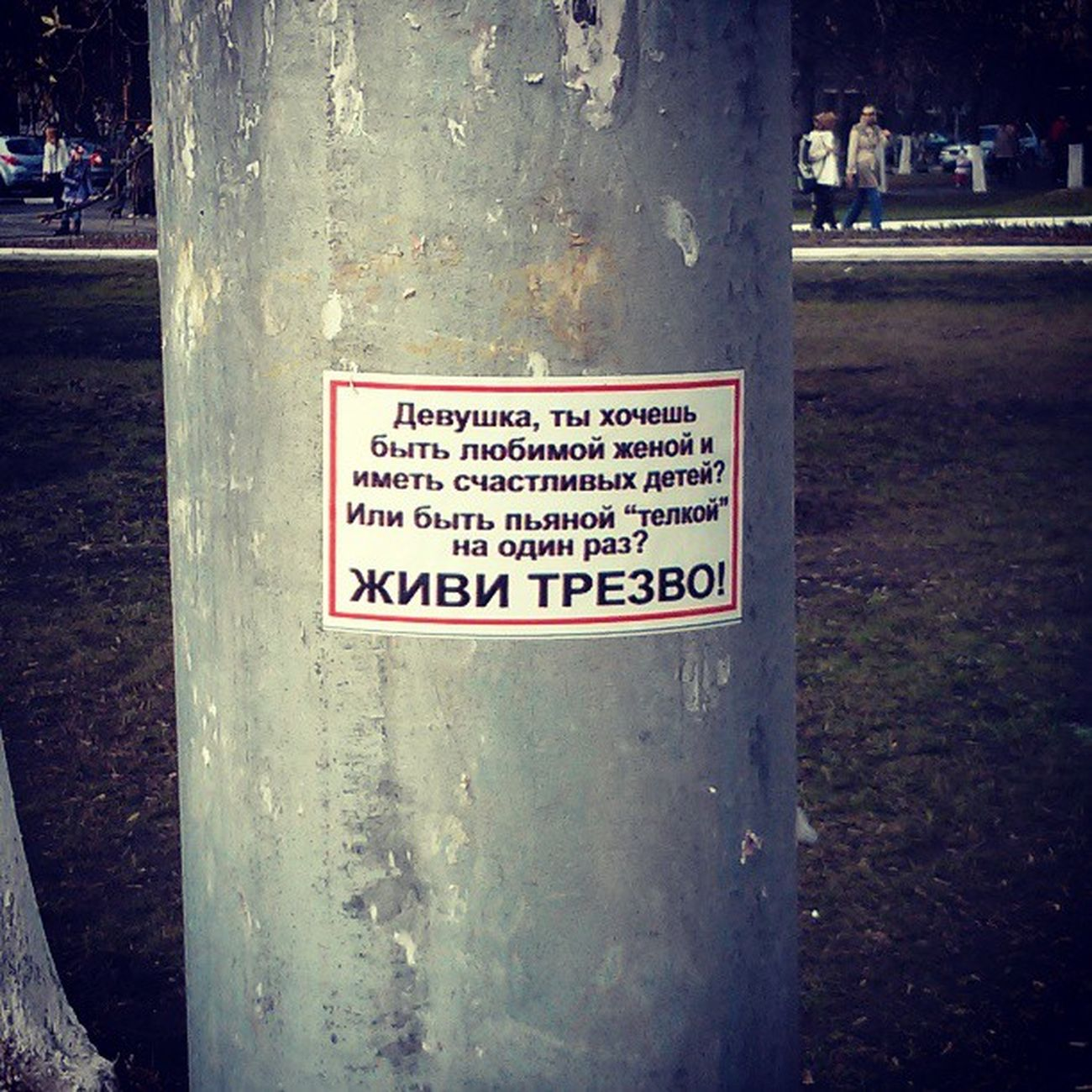 великаяроссия Идиотизм популизм столб всем представлен выбор)