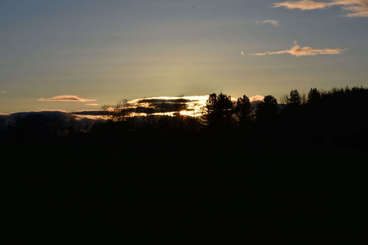 sunset, silhouette, nature, sky, scenics, tree, tranquil scene, tranquility, beauty in nature, no people, landscape, outdoors, day