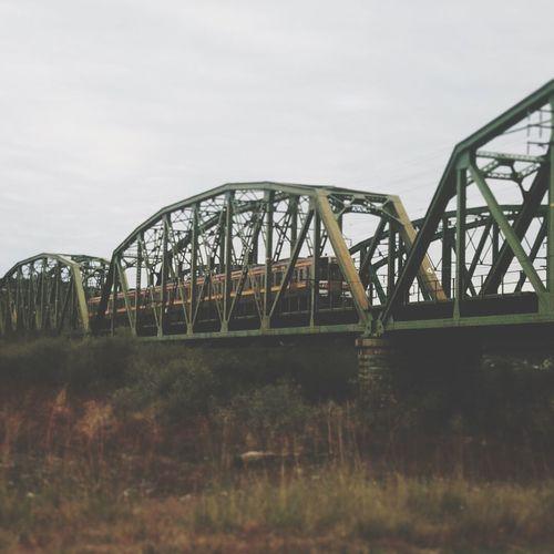 Watching the trains, Bridge - Man Made Structure Engineering Railroad Bridge Transportation Railway Bridge Outdoors Built Structure Architecture Photography Trains