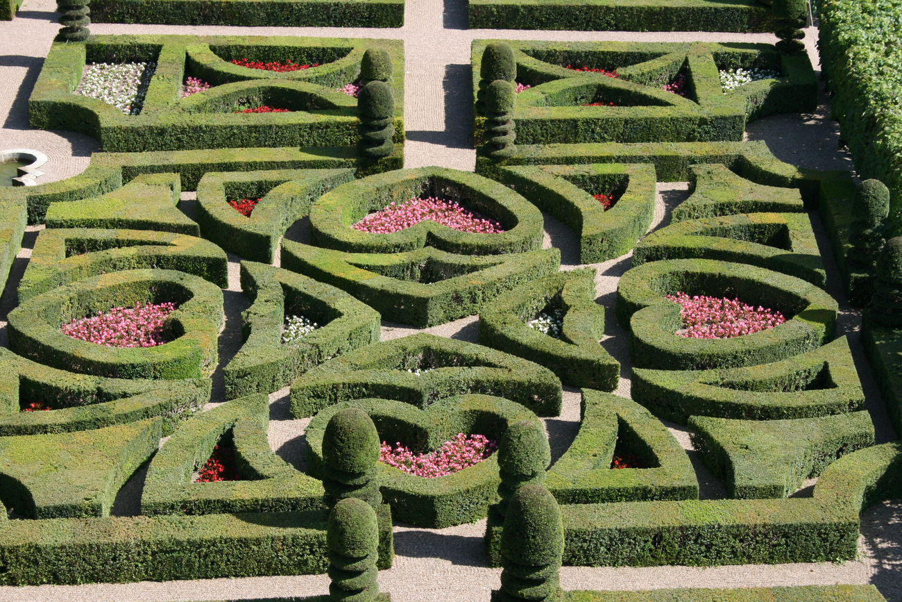 Day France Garden Green Color Growth Heart Shape High Angle View Maze Nature No People Outdoors Villandry Villandry Gardens