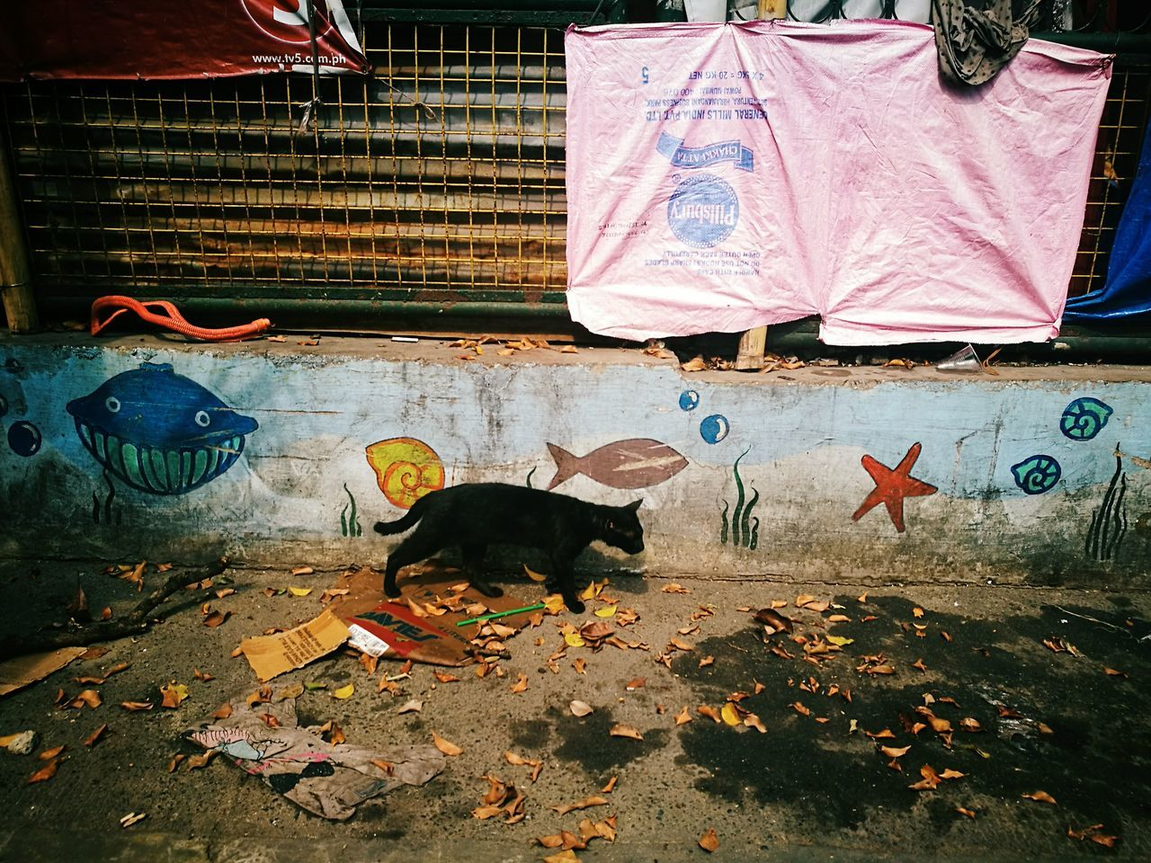 The Street Photographer - 2017 EyeEm Awards Street In Color Telling Stories Differently Your Design Story Street Photography Philippines Outdoors Eyeem Philippines