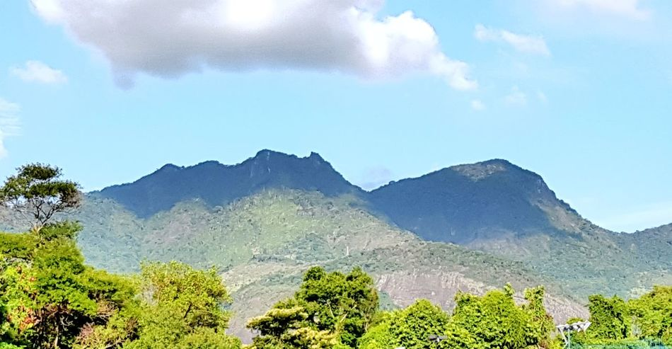Maciço! Landscape Mountain Beauty In Nature Nature Mountain Range Cloud - Sky Sky Tree Outdoors No People Day OEstranhoMundoDePaulinhoAguiar Maciço Da Tijuca Montanha Montanhas Relevo Maciço