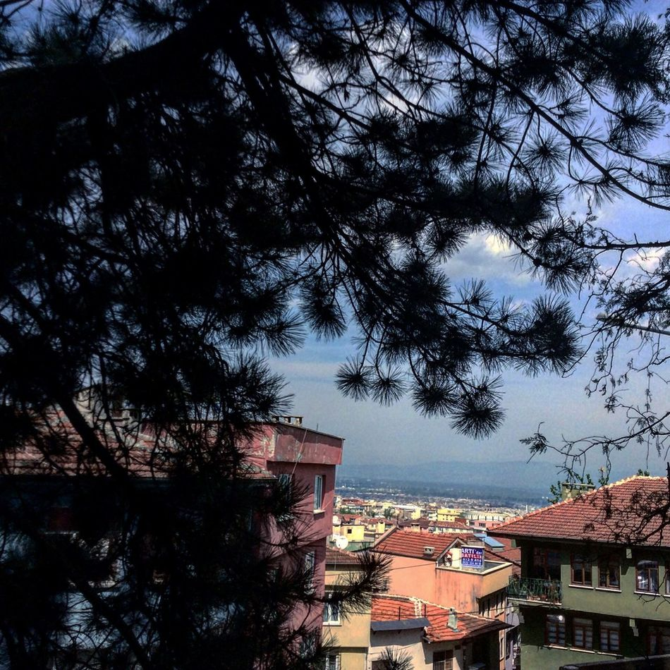 From My Point Of View Beautiful City Ottoman Travelingtheworld  Streetphotography Eye Em Around The World Traveling Historical Building Old Buildings