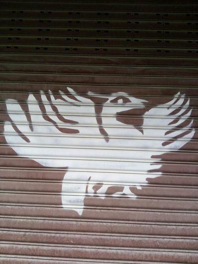 太阳神鸟徽标
