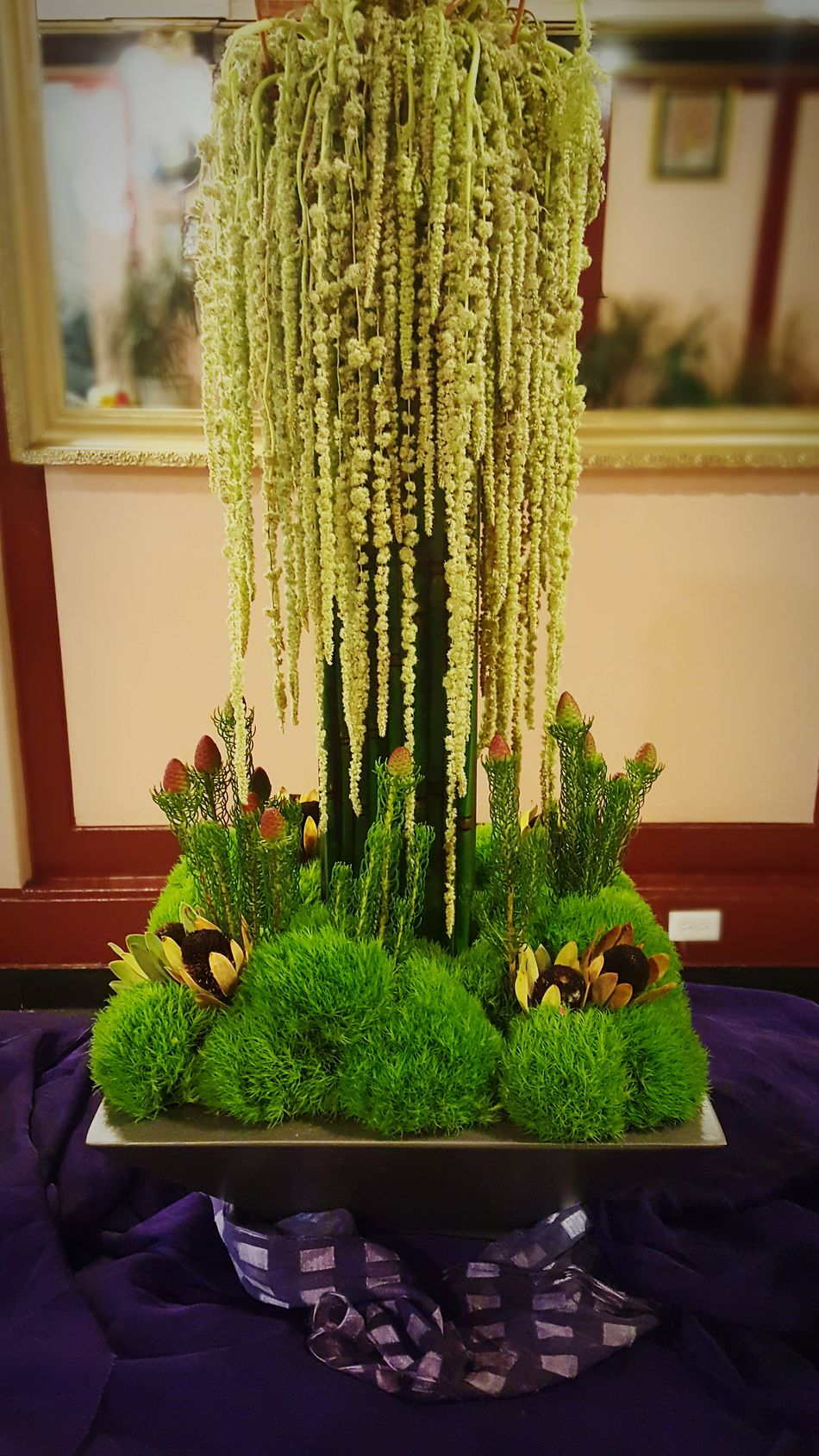 DeYoung Museum Floral Install Deyoung Deart modern Modern Floral Contemporary Floral Arrangements Grass Reeds Moss-covered Moss ba Moss Balls The piece I did for the DE Young De-Art Annual art and Flora show last week I'll let it finish in the lobby of my building. It was a fun piece, expense but fun.