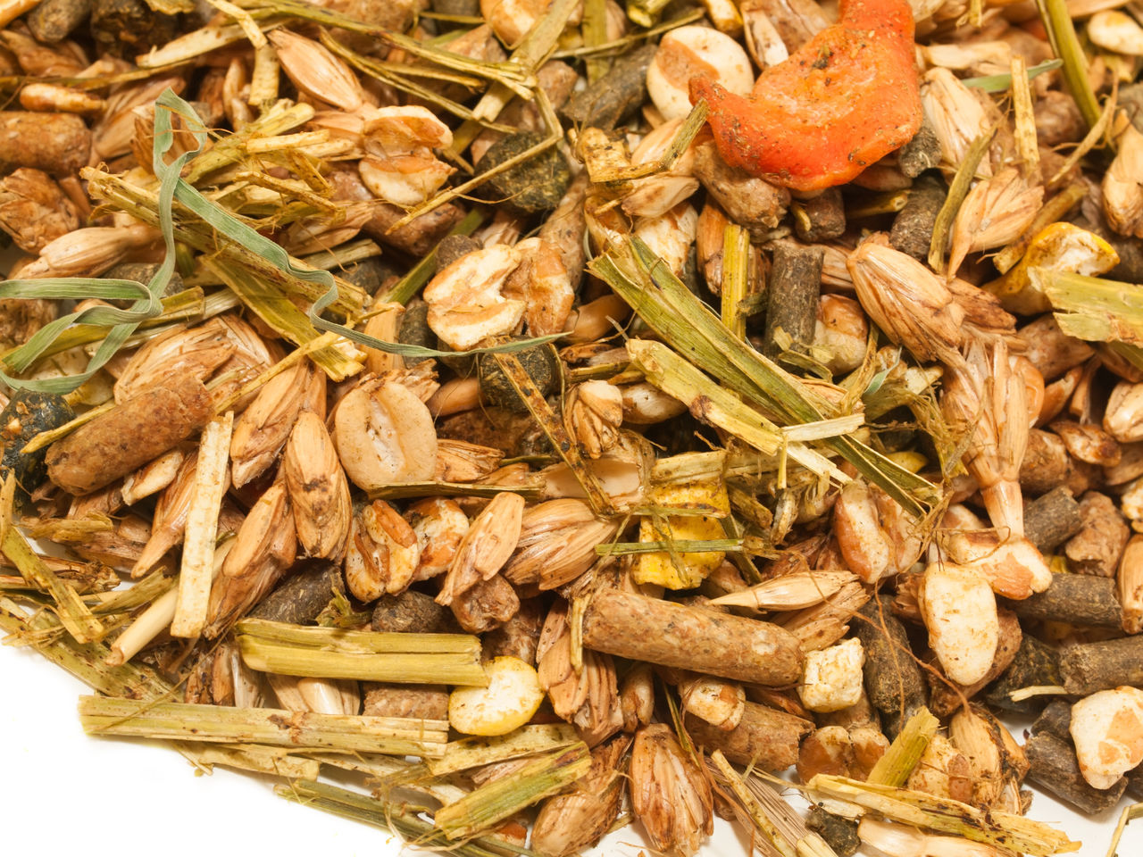 Close-up Day Dry Food Food And Drink Freshness Healthy Eating Horse Food Large Group Of Objects Muslie Nature No People Outdoors Wheat