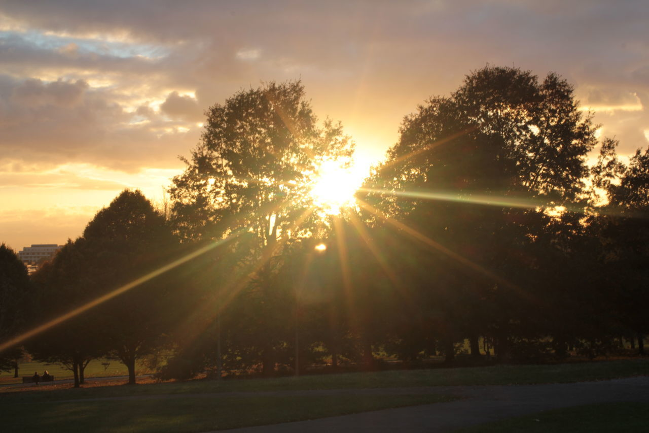 sun, sunbeam, sunset, sunlight, lens flare, tree, sky, outdoors, nature, silhouette, no people, cloud - sky, beauty in nature, scenics, growth, day