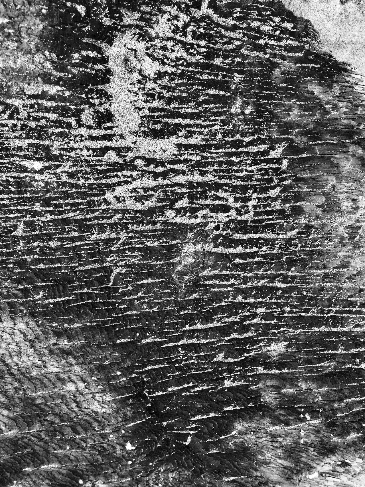 Weathered Textured  Pattern Close-up Outdoors Backgrounds Nature Full Frame Abstractions Beauty In Ordinary Things Naturally Formed Natural Condition Shapes In Nature  Layers And Textures Perspective Views Beauty In Nature Abstract Nature Sand Patterns In Nature Driftwood Designs Natures Diversities Natural Art  Patterns