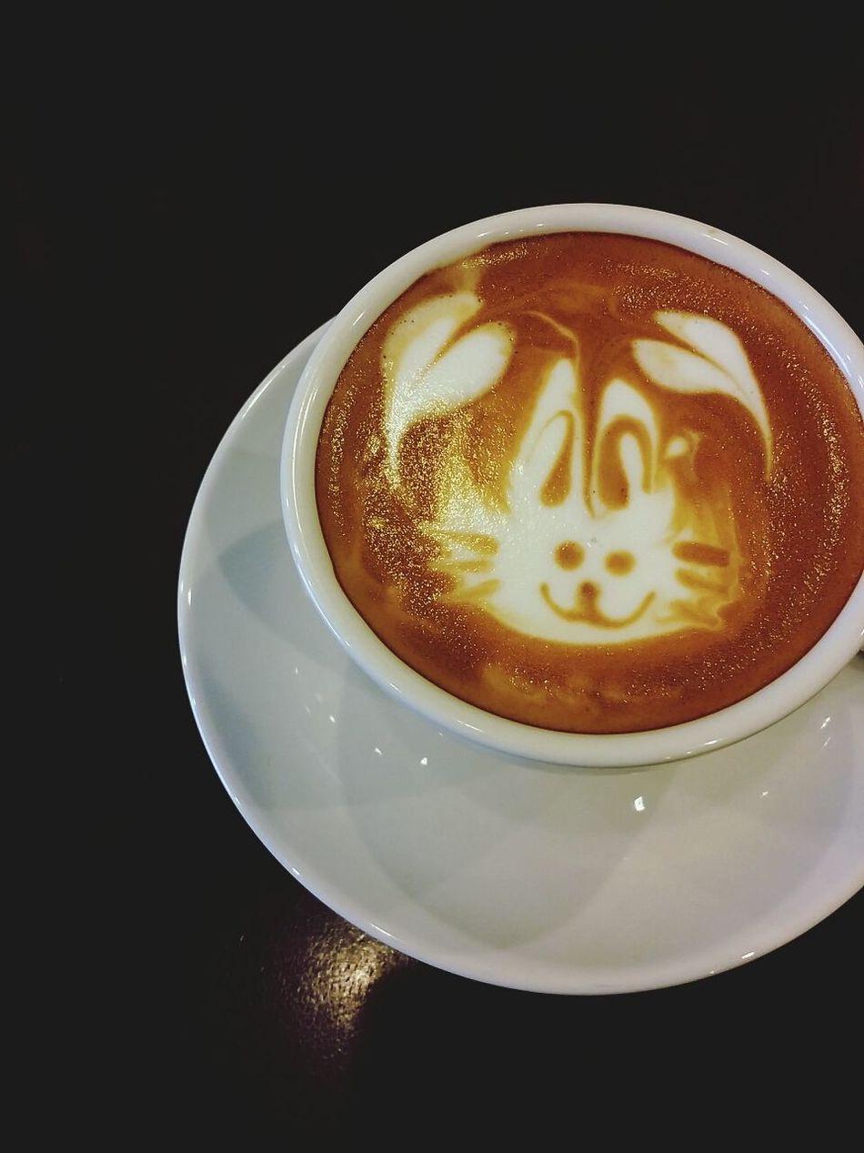 Coffee Time Rabbit Taking Photos Breakfast