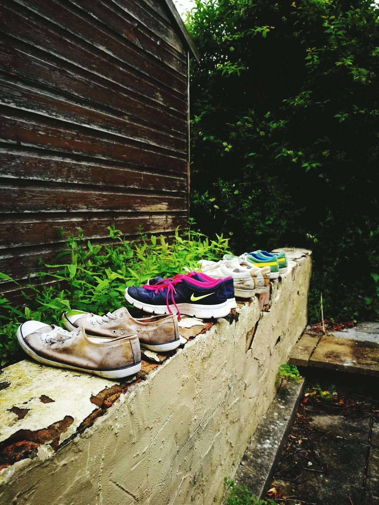 Shoesonawall Shoes On A Wall Shoesinaline Shoes Shoes In A Row Dirty Shoes Dirtyshoes Trainers Sneakers Wall Stone Wall Greenery Trees Garden Lotsosshoes Drying Shoes Shoes Drying On A Wall Shoesdryingonawall Rowofshoes Row Of Shoes Fresh On EyeEmAfterwalking After Walking Muddyshoes Muddy Shoes