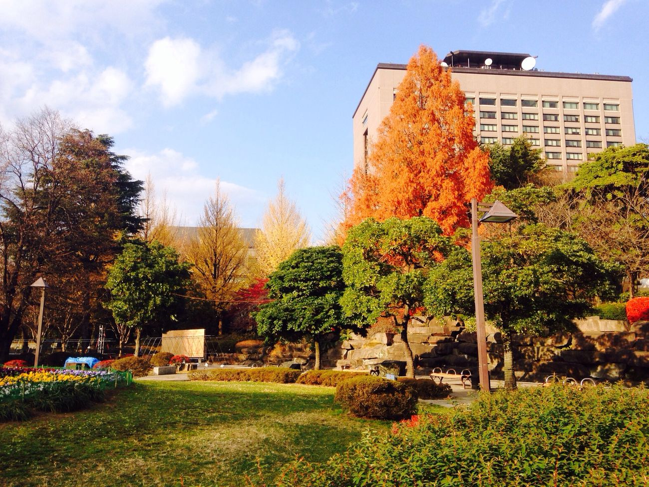 Sendai-shi Park Colourful
