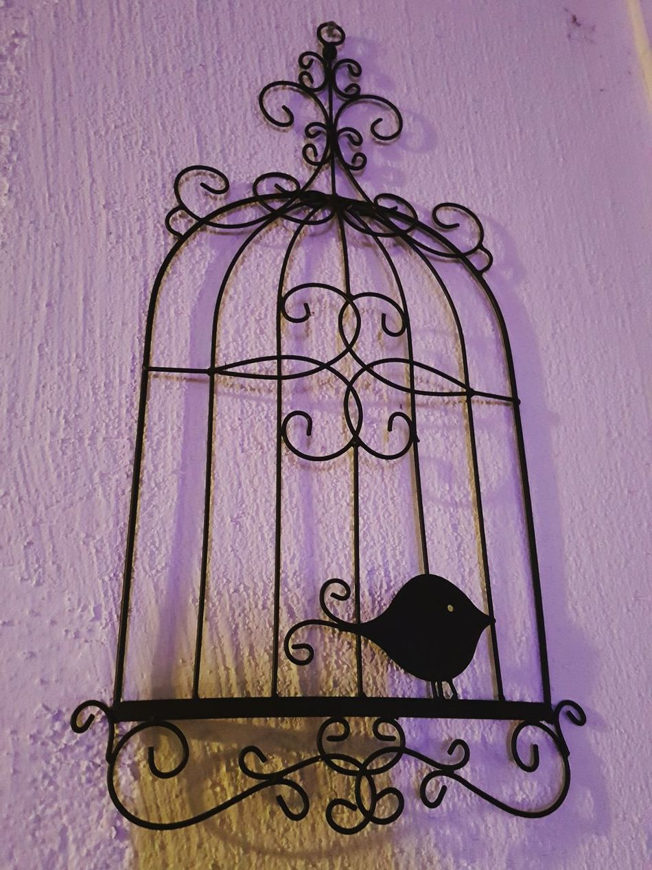 Interior Design Birdscage