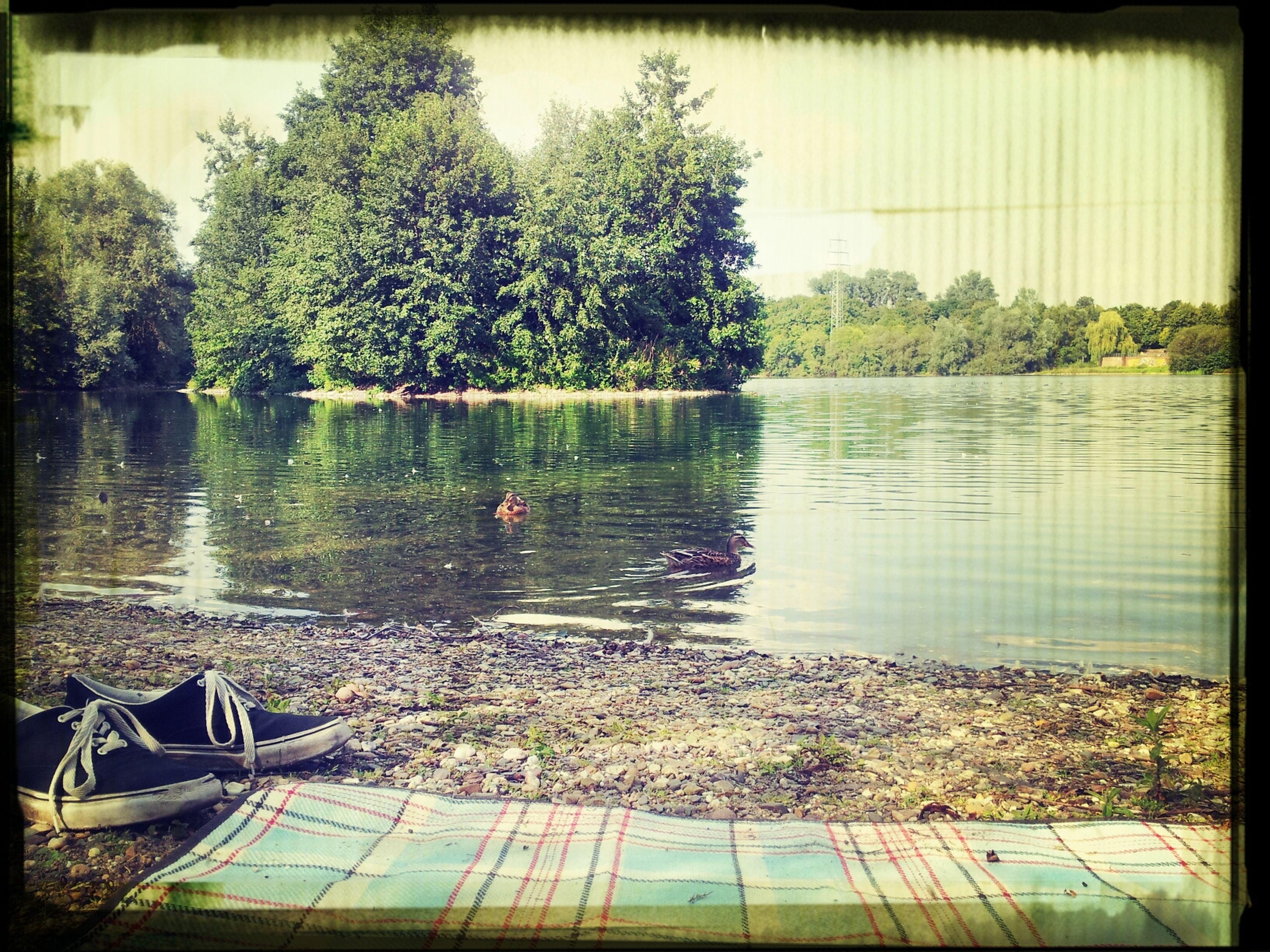 Lake Enjoying Life Life2gud