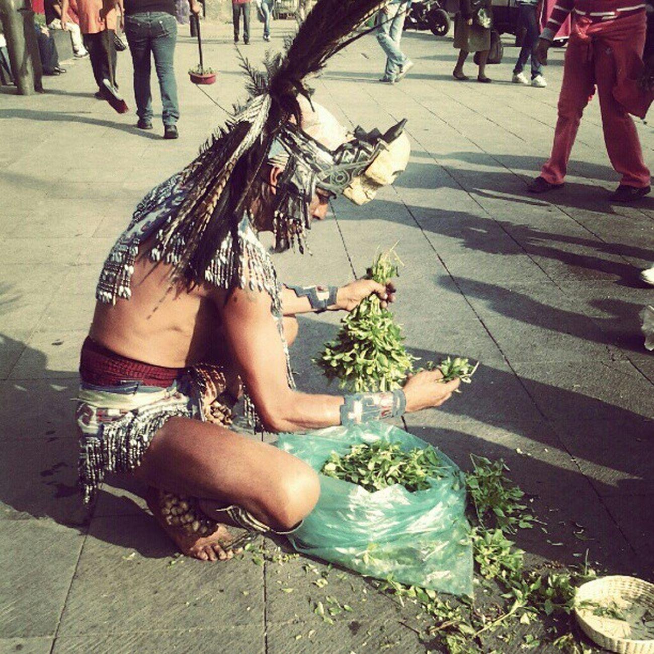 Las caras de mexico Df Cultura Desendencia