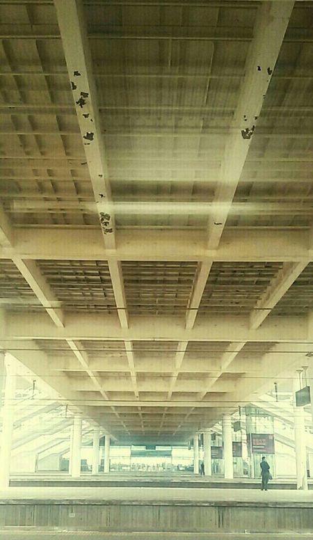 Bridge View Platform Train Station