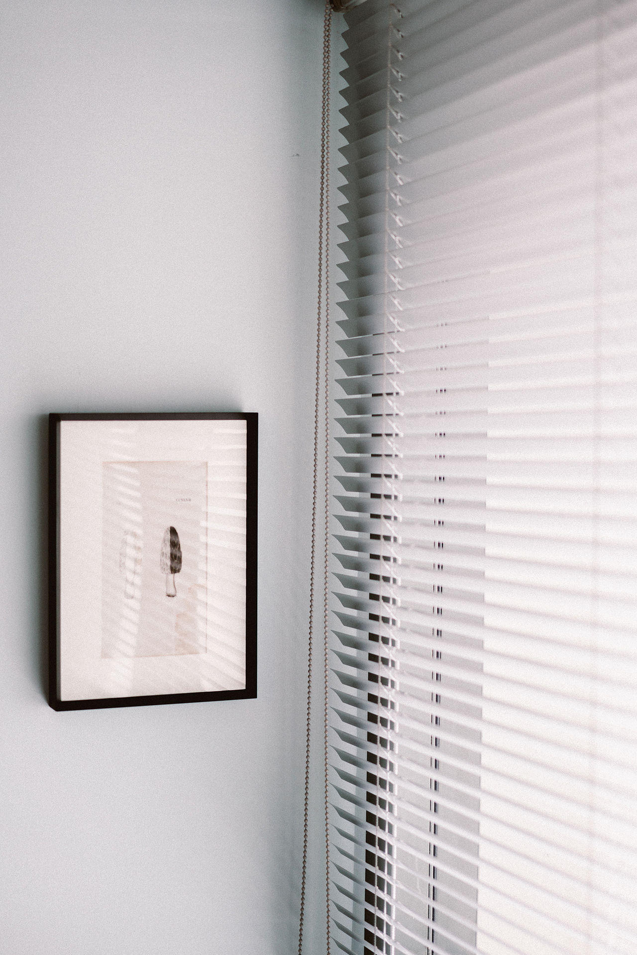 Architecture Blinds Day Home Interior Indoors  No People Window