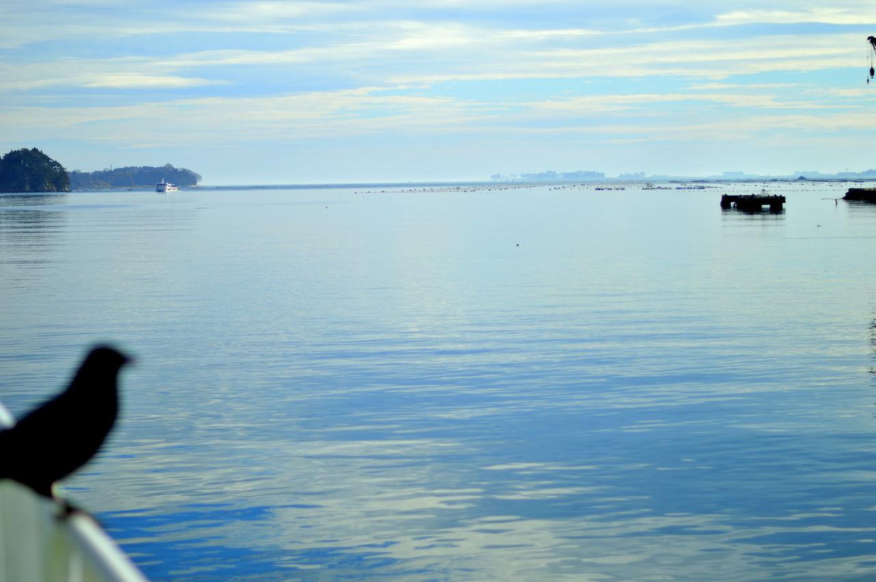 Kesennuma-bay Miyagi Japan 大島汽船 フェリー亀山 Sea