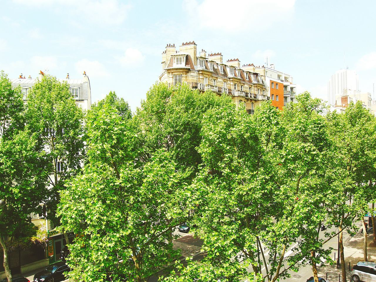 Architecture City Travel Destinations Tree No People History Growth Cloud - Sky Nature Outdoors Day Panoramic Landscape Landscape_photography France Photos Parispics Paris, France  Architecture Cityscape Paris, France  Street Montparnasse Streetphotography Street Stretphotography Parisweloveyou
