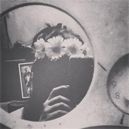 Amour Bw Photog Flowercrown  Instamood