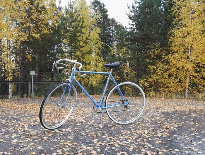 My summer project is getting ready !! Peugeot retro sports bike ! Bicycle Transportation Land Vehicle Nature No People Day Outdoors Autumn Peugeot Peugeot Bike Retro Renew Rebuilt Light Blue