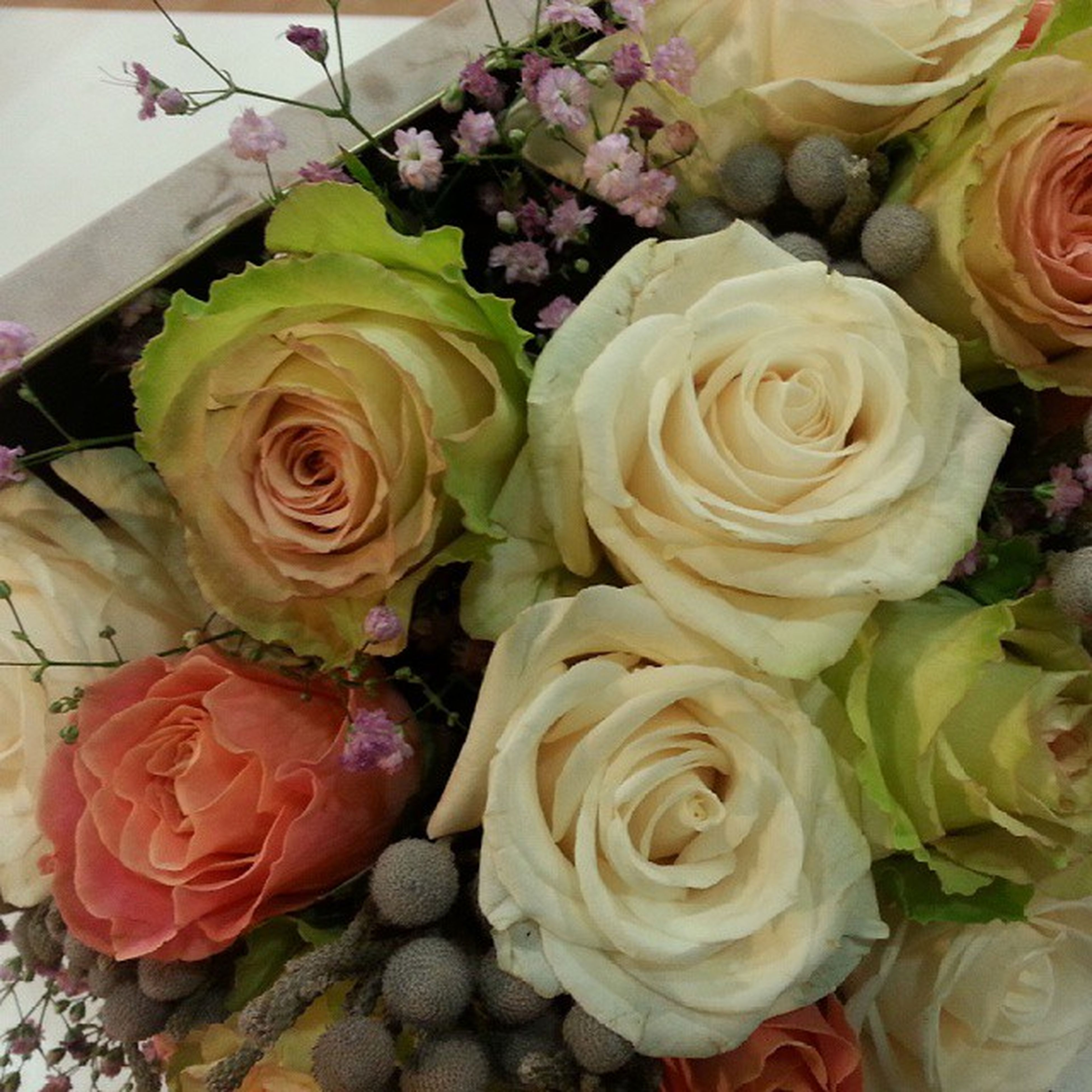 flower, rose - flower, freshness, fragility, petal, rose, flower head, indoors, bouquet, beauty in nature, high angle view, bunch of flowers, close-up, nature, variation, growth, multi colored, no people, plant, pink color