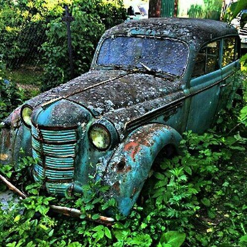 EyeEm Gallery Eye4photography  Old Car Cars Car Show Car Porn Раритет старый автомобиль автомобиль Авто