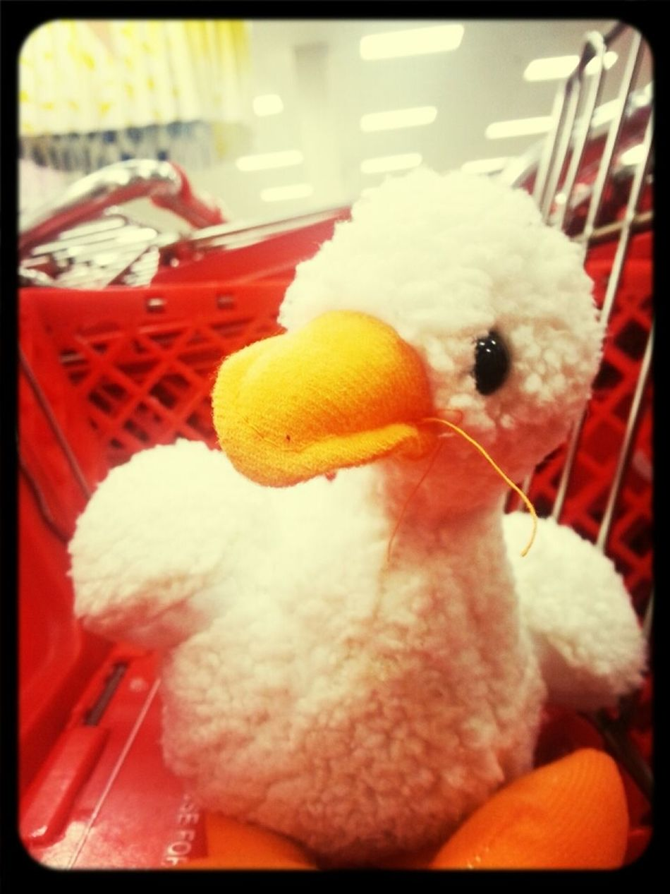 my quack quack