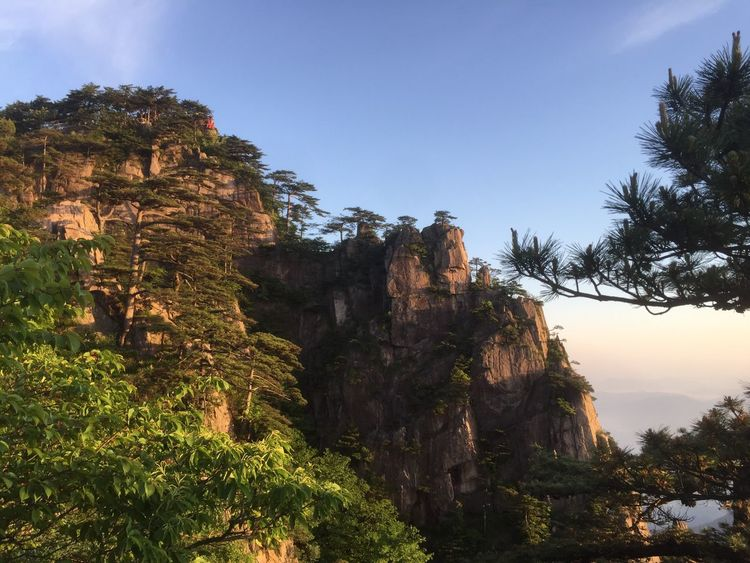 Nature Beauty In Nature Tree Outdoors Rock Formation Sky Cliff No People Day