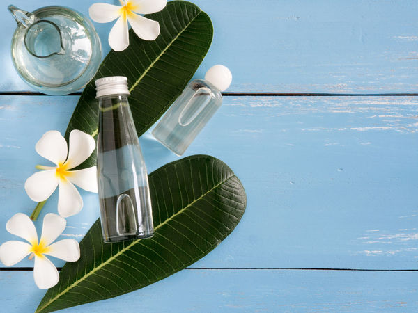 spa products, aroma oil,Plumeria flower and leaves on blue wooden table with copy space. Aromatherapy Beautiful Care Herb Nature Relaxing Therapy Aroma Bottle Cleanser Concept Cosmetic Cream Facial Leaf Leaves Massage Moisturizer Oil Organic Scrubs Skincare Spa Spa Treatment Treatment